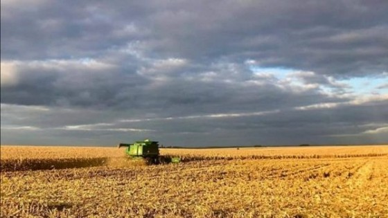 Son esperables escasas lluvias y heladas agrometeorológicas para la actual semana — Audios — Dinámica Rural | El Espectador 810