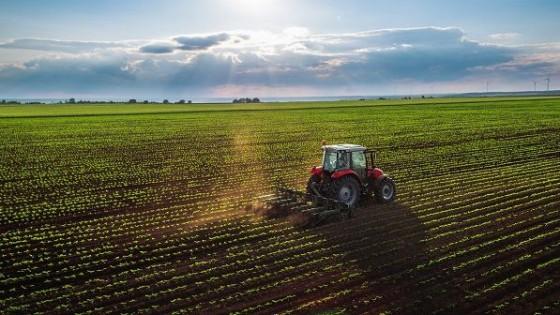 La LUC y su impacto en el sector agropecuario — Economía — Dinámica Rural | El Espectador 810