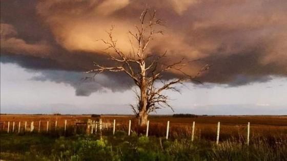 M. Bidegain: 'El acumulado de precipitaciones puede estar por encima de los 100 milímetros' — Audios — Dinámica Rural | El Espectador 810
