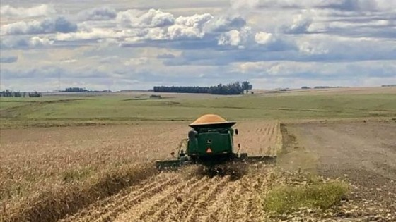 E. Uribe: En agricultura, más allá del clima, 'la rotación es clave en el resultado' — Agricultura — Dinámica Rural | El Espectador 810