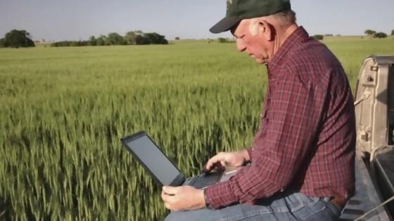 Mercados: Bajan los granos, mientras que las haciendas están al alza — Mercados — Dinámica Rural | El Espectador 810