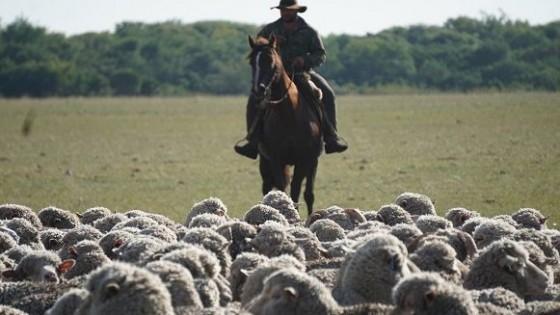 R. Máximo: ''Es un hecho la exportación de ovinos en pie'' — gremiales — Dinámica Rural | El Espectador 810