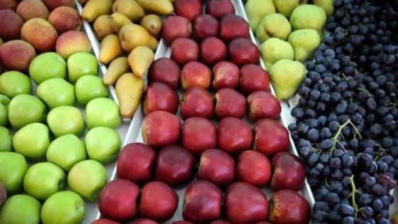 El descubrimiento de Darwin respecto al covicho y el mito del azúcar de las frutas — NTN Concentrado — No Toquen Nada | El Espectador 810