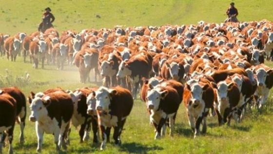 S. Da Silva: 'El objetivo es alcanzar los 13 millones de bovinos' — Ganadería — Dinámica Rural | El Espectador 810