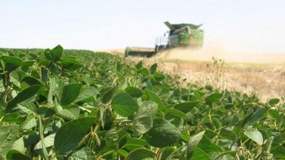 E. Uribe: 'La soja volvió a ser atractiva, con 370 dólares la tonelada' — Agricultura — Dinámica Rural | El Espectador 810