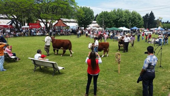 A. Alvarez: La 74a Expo Paysandú representa 'la sinergia entre la ganadería y la agricultura' — gremiales — Dinámica Rural | El Espectador 810