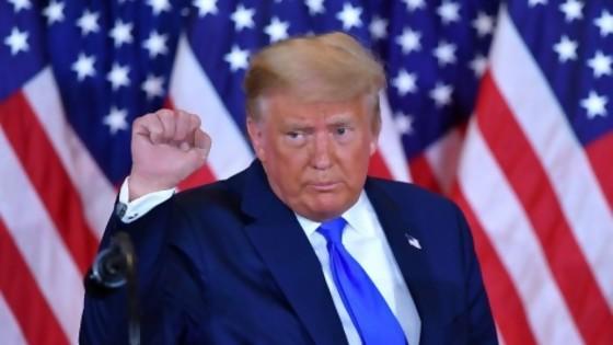 Darwin en un día de caos: Trump y Lust   — Columna de Darwin — No Toquen Nada | El Espectador 810
