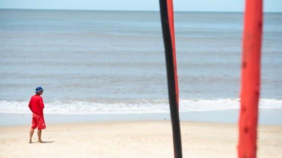 Lo mejor de las columnas de Darwin del  09/11 al 13/11 — Columna de Darwin — No Toquen Nada | El Espectador 810