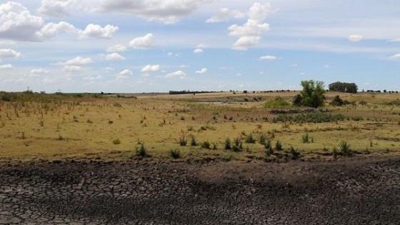 J. L. Pérez: ''No hay probabilidad de lluvias en el corto plazo'' — Clima — Dinámica Rural | El Espectador 810