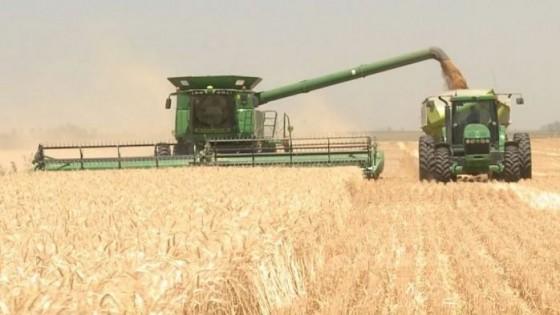 Agricultura: ''En invierno venimos bien, la incertidumbre, por ahora, es la soja'' — Agricultura — Dinámica Rural | El Espectador 810