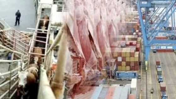J. Dimu: ''Hasta el primer trimestre de 2021 no habrá cambios en el comercio para la carne'' — Economía — Dinámica Rural | El Espectador 810