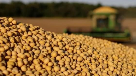 Reporte del USDA ''no confirmó pronóstico de stocks de granos'' — Mercados — Dinámica Rural   El Espectador 810