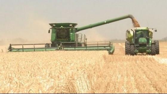 J. Rodríguez: ''La zafra de invierno marcó rindes record'' — Agricultura — Dinámica Rural | El Espectador 810