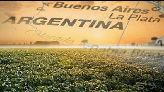 Argentina: ''El 25% de la zona agrícola está afectada por el déficit hídrico'' — Agricultura — Dinámica Rural | El Espectador 810