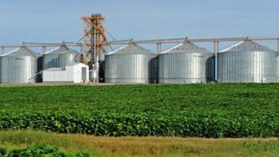 Las lluvias ocurrieron en el momento justo para la siembra de soja de segunda — Agricultura — Dinámica Rural | El Espectador 810