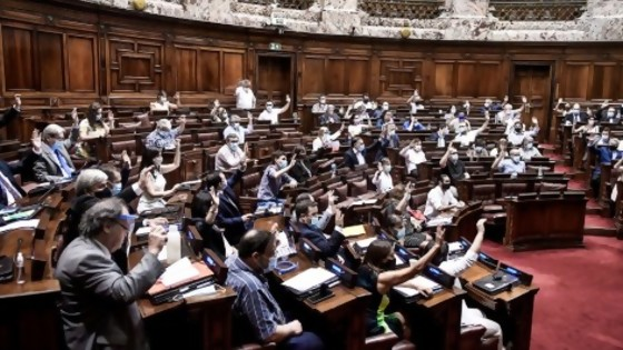 El debate en el Parlamento sobre la limitación del derecho a reunión — Informes — No Toquen Nada | El Espectador 810