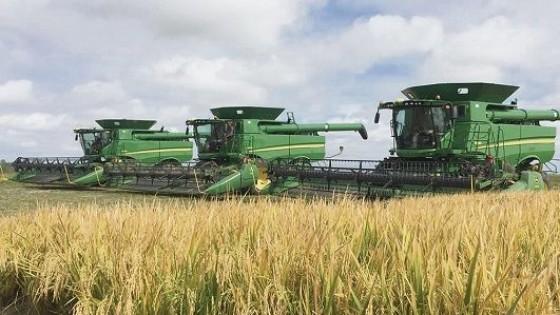 ACA evalúa propuesta de rebaja del gasoil — Agricultura — Dinámica Rural | El Espectador 810