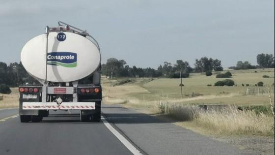 Conaprole aumentó de 5 a 10% la bonificación estacional para la remisión de enero y febrero — Lechería — Dinámica Rural | El Espectador 810