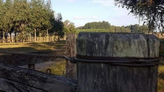 El Congreso Anual, Instituto de Bienestar Animal, Seguridad Rural, competitividad y rentabilidad en la agenda de Federación Rural — gremiales — Dinámica Rural | El Espectador 810