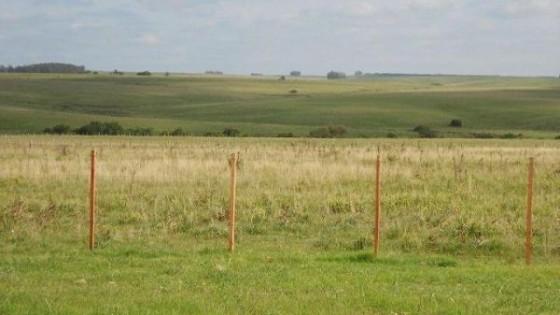C. Rydstrom: ''A través un convenio con los Gobiernos departamentales, asistiremos a productores afectados por déficit hídrico'' — Ganadería — Dinámica Rural | El Espectador 810