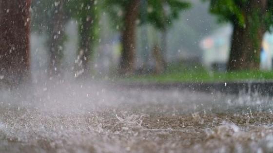 J. L. Pérez: Seguimos con advertencia de ''La Niña'' — Clima — Dinámica Rural   El Espectador 810