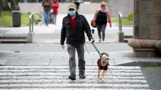 Las intervenciones artísticas de la IM y un decreto que exige que los perros sean conducidos con correa y collar — NTN Concentrado — No Toquen Nada   El Espectador 810