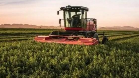 Pasturas: Qué y cómo sembrar pos déficit hídrico — Ganadería — Dinámica Rural | El Espectador 810