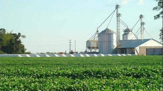 Paraguay tiene un piso de 1.000 kgs/há para la soja, pero 2/3 del área podrían marcan rindes superiores — Agricultura — Dinámica Rural | El Espectador 810