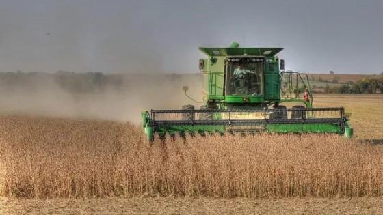 El reporte del USDA mantuvo la producción de soja de EEUU, que rondaría los 112 millones de toneladas — Economía — Dinámica Rural | El Espectador 810