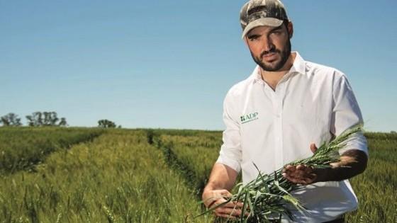En soja ''hay un abanico de situaciones a nivel de chacras, tanto como los registros de  lluvias'' — Agricultura — Dinámica Rural | El Espectador 810