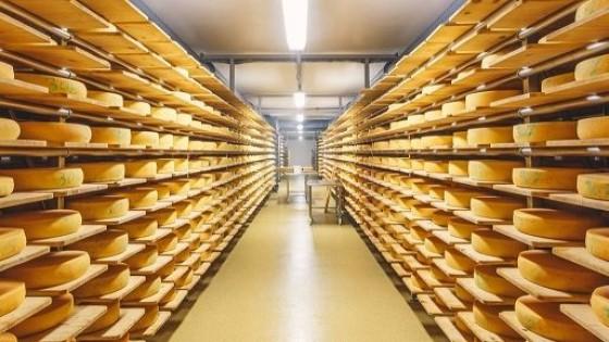 Lácteos: La corrección arancelaria de China favorece a Uruguay — Lechería — Dinámica Rural | El Espectador 810