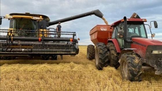 H. Zorrilla: ''En el Este se cosechó un 25% del área de arroz, y los rindes son 'muy buenos''' — Agricultura — Dinámica Rural | El Espectador 810