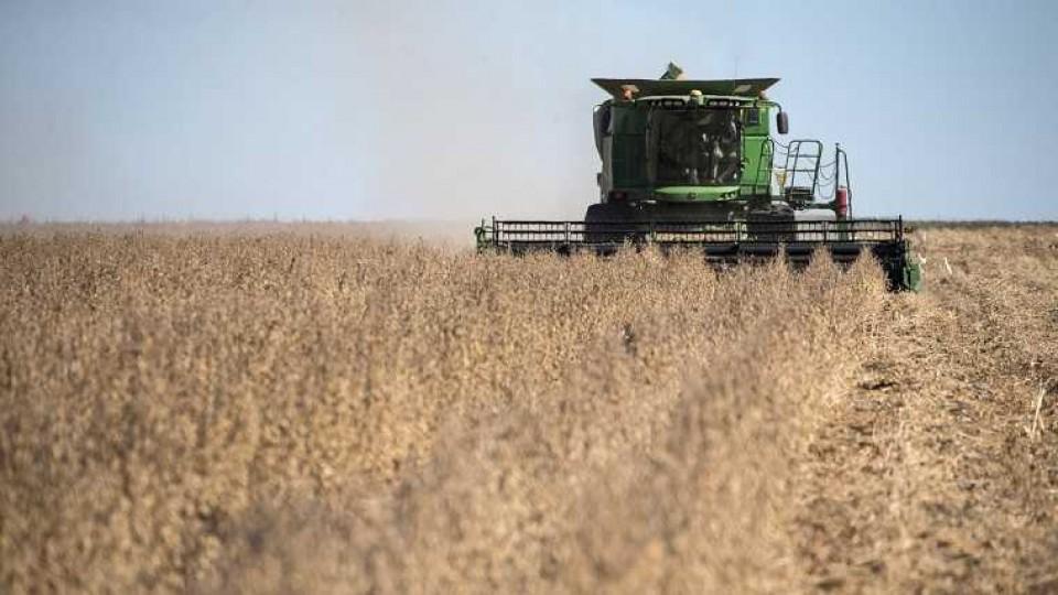 Con rindes dentro de lo esperado se dio inicio a la cosecha de soja —  Audios — Dinámica Rural | El Espectador 810