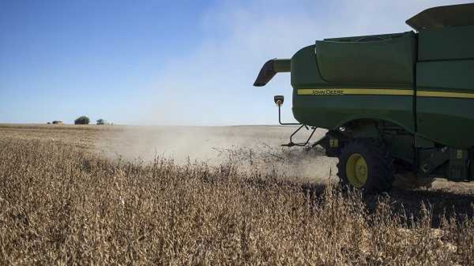 Luego de una semana de fuertes bajas en la soja, los fondos de inversión alzan el precio de la oleaginosa —  Audios — Dinámica Rural | El Espectador 810