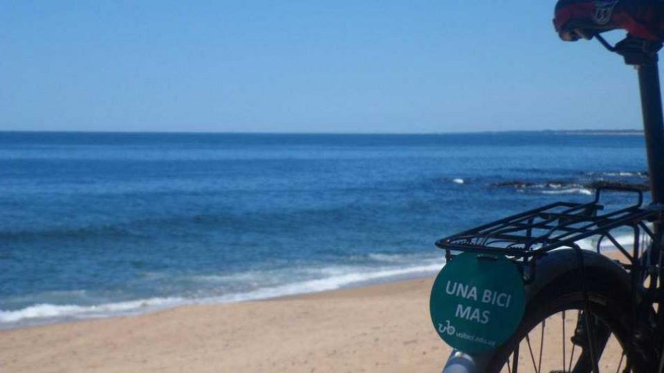 Unibici: Incentivar el uso de la bicicleta entre universitarios —  El maravilloso mundo de Moncho Licio — Otro Elefante | El Espectador 810