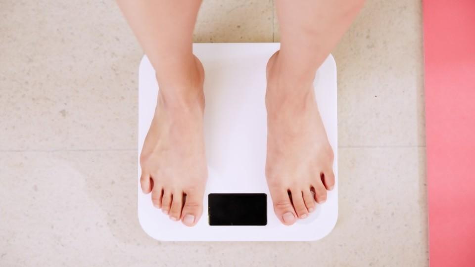 Puesta a punto de nuestros pesos pesados —  Pesos pesados — Bien Igual | El Espectador 810