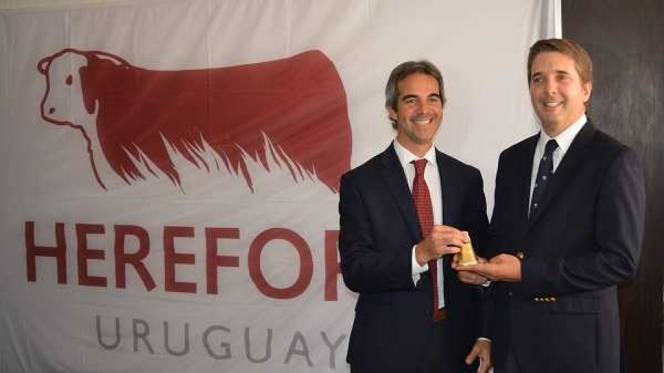 Felipe Bove asume como el nuevo presidente de la Sociedad de Criadores de Hereford —  Ganadería — Dinámica Rural   El Espectador 810