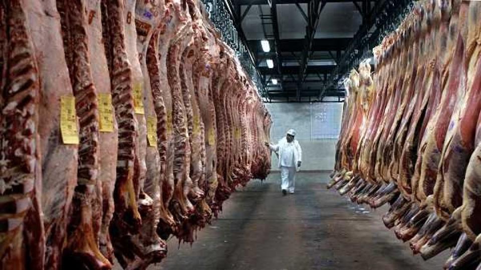 Brasil suspende sus exportaciones de carne ante aparición de un caso aislado de 'Vaca loca' —  Economía — Dinámica Rural | El Espectador 810