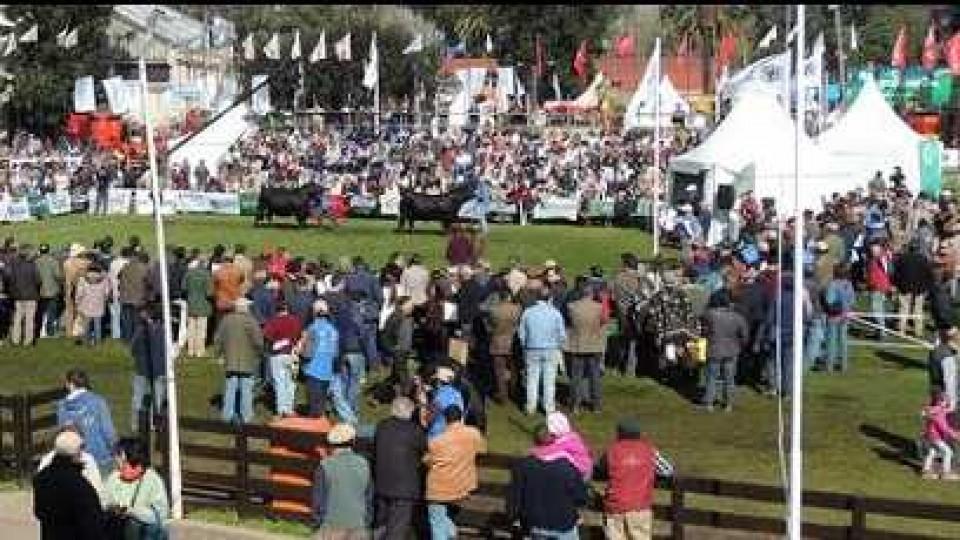 114ª Expo Prado se realizará del 4 al 15 de setiembre  —  Ganadería — Dinámica Rural | El Espectador 810