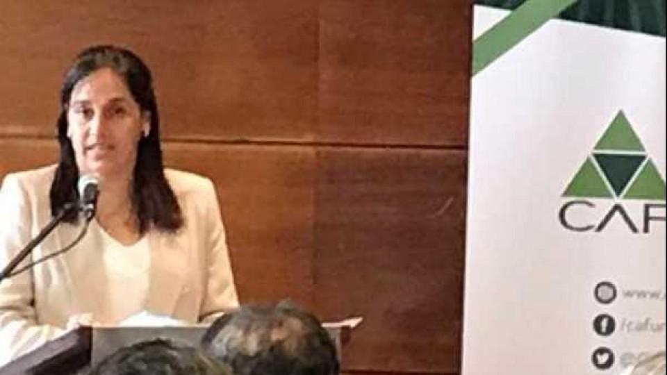 CAF presentó 'Documento a presidenciables para el próximo quinquenio, subrayando competitividad,rentabilidad y seguridad rural' —  Audios — Dinámica Rural | El Espectador 810