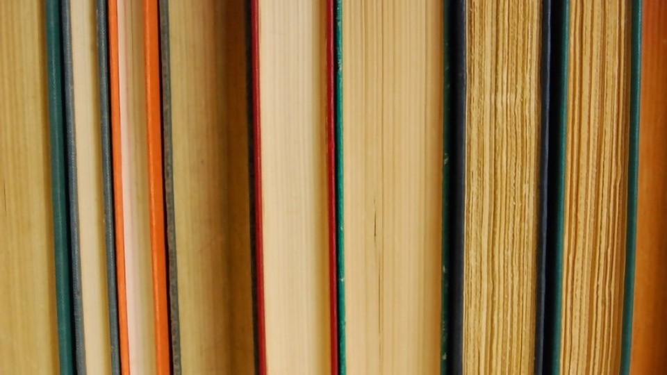 Los libros que vos robáis —  Ines Bortagaray — No Toquen Nada   El Espectador 810