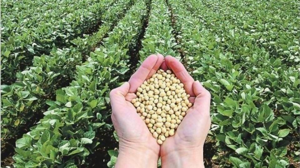 El endeudamiento del agro se ubicó en el último ejercicio en 2400 millones de dólares —  Audios — Dinámica Rural | El Espectador 810