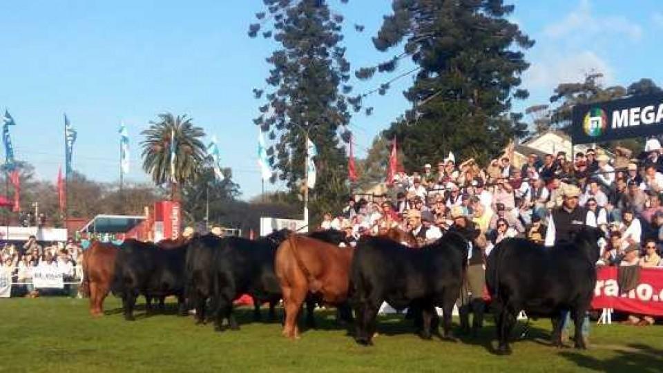 Se viene la 114ª Expo Prado del 4 al 15 de setiembre con un perfil enfocado en el agronegocio —  Ganadería — Dinámica Rural | El Espectador 810