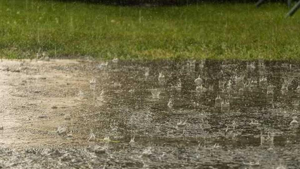 Temperaturas bajas y lluvias por encima de lo normal —  Audios — Dinámica Rural | El Espectador 810