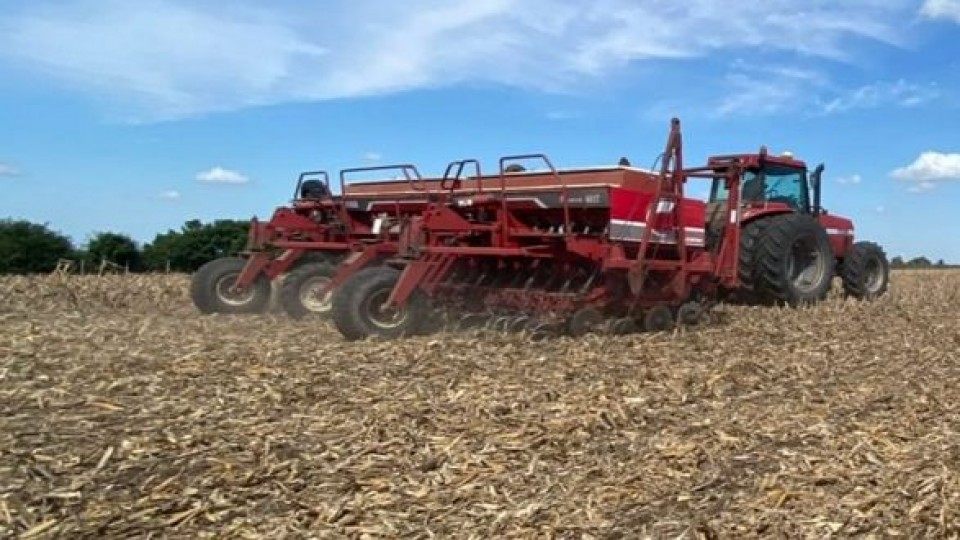 Comenzó la siembra de colza y se viene la trilla de soja —  Agricultura — Dinámica Rural   El Espectador 810