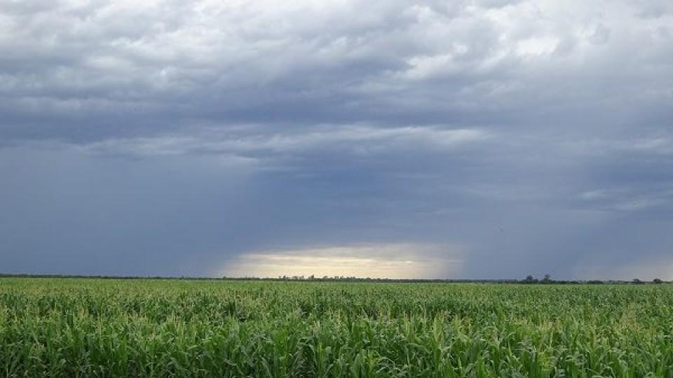M. Bidegain: ''Atrás quedó el déficit hídrico, e ingresamos en un escenario neutro'' —  Clima — Dinámica Rural | El Espectador 810