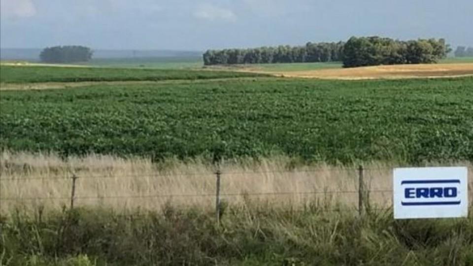 En el centro: ''En soja hay alta variabilidad de rendimiento, pero en casos puntuales se alcanzan los 2 mil kgs/há'' —  Agricultura — Dinámica Rural | El Espectador 810