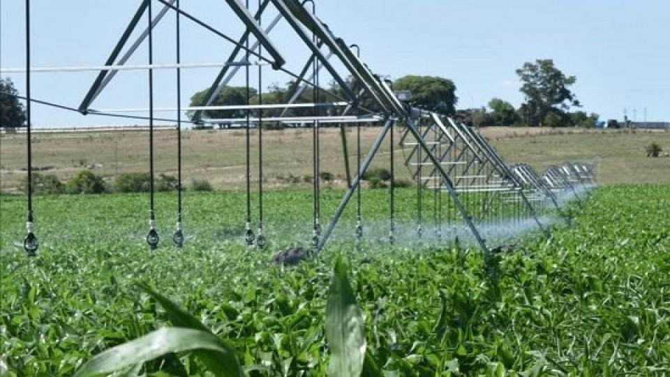 Lechería: Mientras crece su adopción, el riego llegó para quedarse —  Lechería — Dinámica Rural   El Espectador 810
