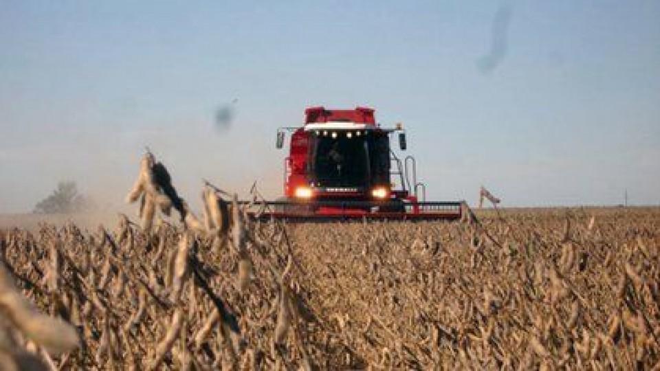 Volátil: la soja sube 10 dólares un día y al otro baja hasta 20 dólares —  Economía — Dinámica Rural   El Espectador 810