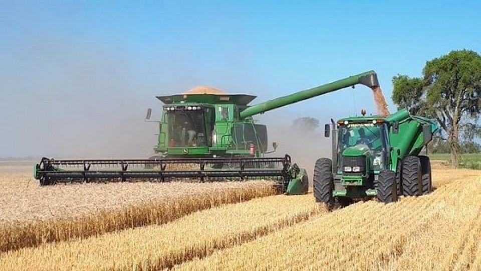 J. Perrachón: En soja los rindes van desde 700 a 4.000 kgs/há —  Agricultura — Dinámica Rural   El Espectador 810